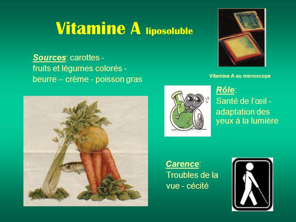 Vitamine A liposoluble Sources: carottes - fruits et légumes colorés - beurre – crème - poisson gras Rôle: Santé de lœil - adaptation des yeux à la lumière Carence: Troubles de la vue - cécité Vitamine A au microscope