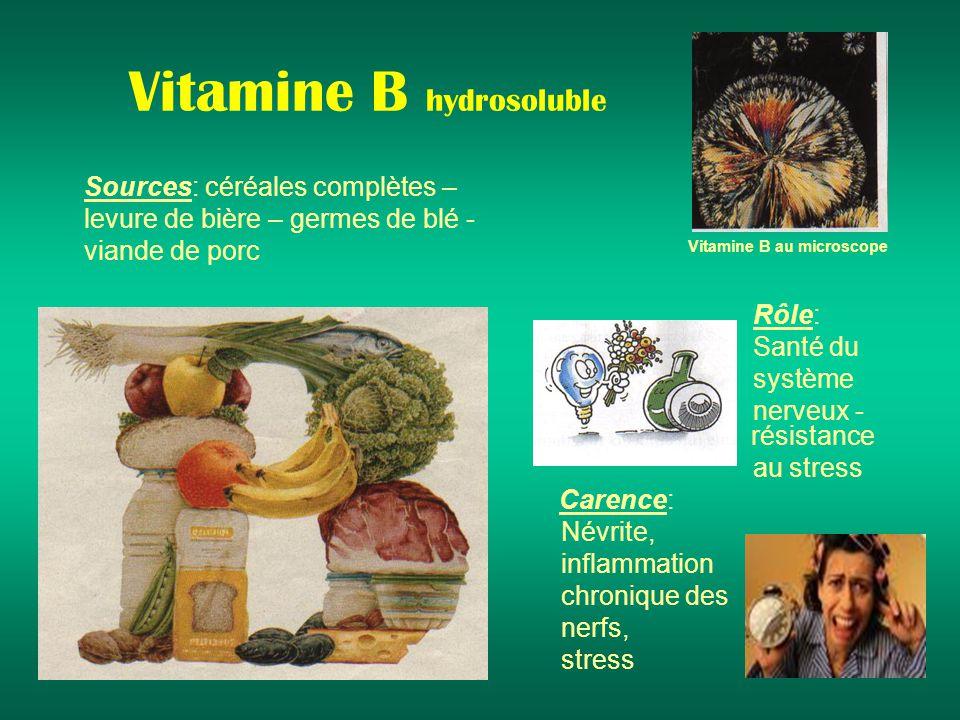 Vitamine B hydrosoluble Sources: céréales complètes – levure de bière – germes de blé - viande de porc Rôle: Santé du système nerveux - résistance au stress Carence: Névrite, inflammation chronique des nerfs, stress Vitamine B au microscope