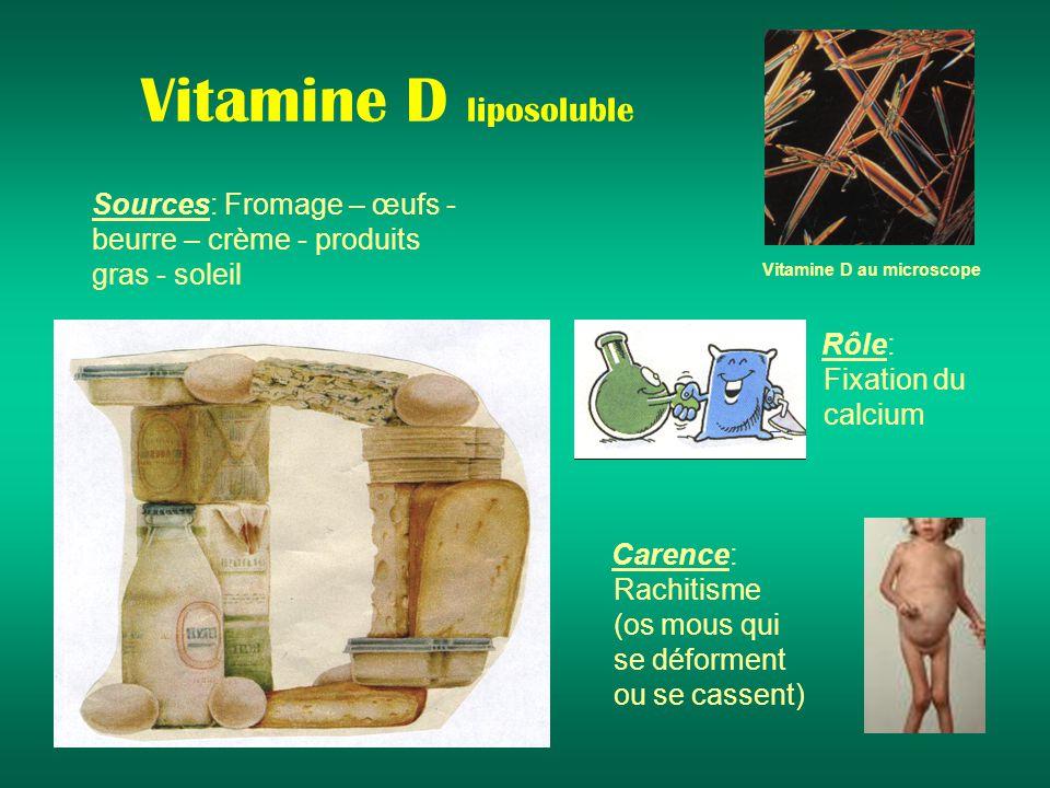 Vitamine D liposoluble Sources: Fromage – œufs - beurre – crème - produits gras - soleil Rôle: Fixation du calcium Carence: Rachitisme (os mous qui se déforment ou se cassent) Vitamine D au microscope