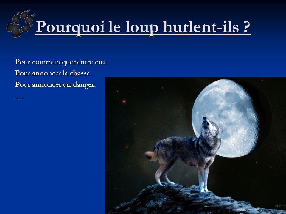 Pourquoi le loup hurlent-ils ? Pour communiquer entre eux. Pour annoncer la chasse. Pour annoncer un danger. …