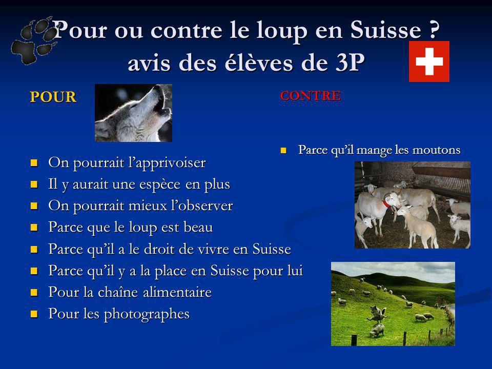 Pour ou contre le loup en Suisse ? avis des élèves de 3P POUR On pourrait lapprivoiser On pourrait lapprivoiser Il y aurait une espèce en plus Il y au