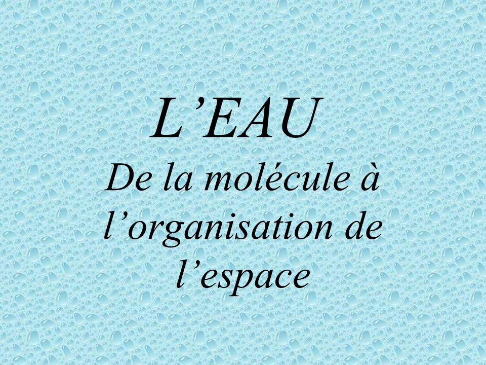 L EAU De la molécule à l organisation de l espace