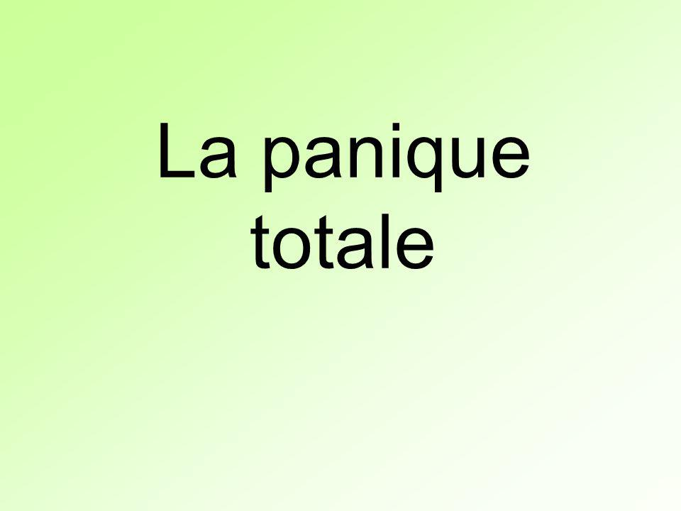 La panique totale