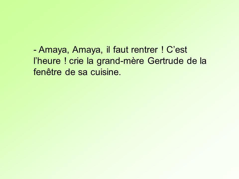 - Amaya, Amaya, il faut rentrer ! Cest lheure ! crie la grand-mère Gertrude de la fenêtre de sa cuisine.