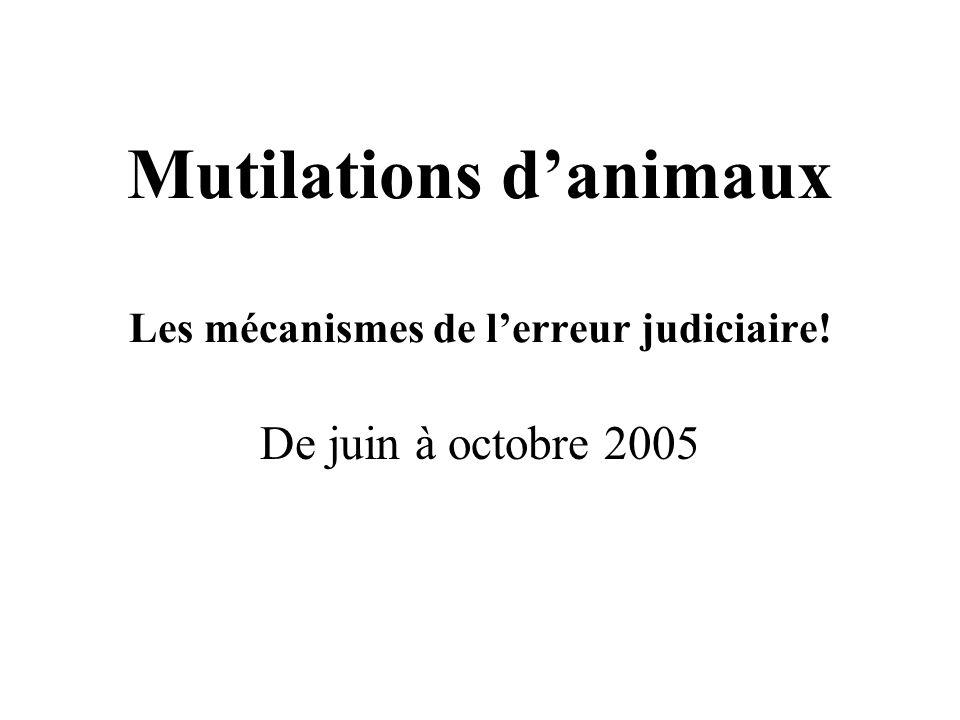 Mutilations danimaux Les mécanismes de lerreur judiciaire! De juin à octobre 2005