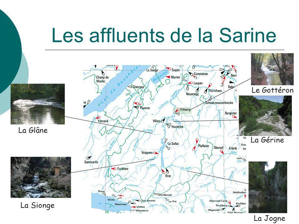 Les affluents de la Sarine La Sionge La Jogne La Gérine Le Gottéron La Glâne