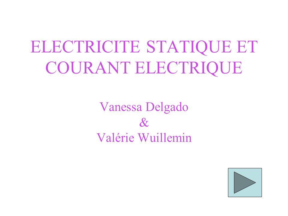 ELECTRICITE STATIQUE ET COURANT ELECTRIQUE Vanessa Delgado & Valérie Wuillemin