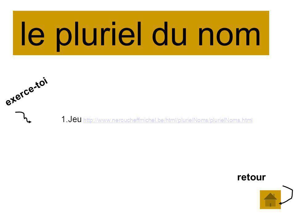 le pluriel du nom 1.Jeu http://www.neroucheffmichel.be/html/plurielNoms/plurielNoms.html http://www.neroucheffmichel.be/html/plurielNoms/plurielNoms.html exerce-toi retour