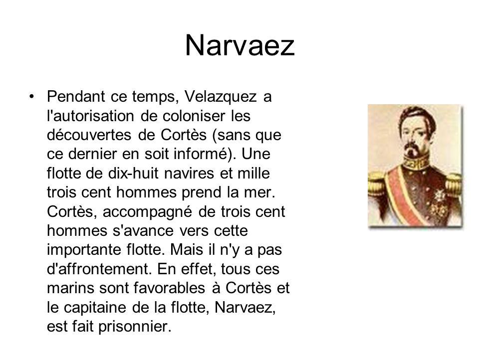 Narvaez Pendant ce temps, Velazquez a l'autorisation de coloniser les découvertes de Cortès (sans que ce dernier en soit informé). Une flotte de dix-h