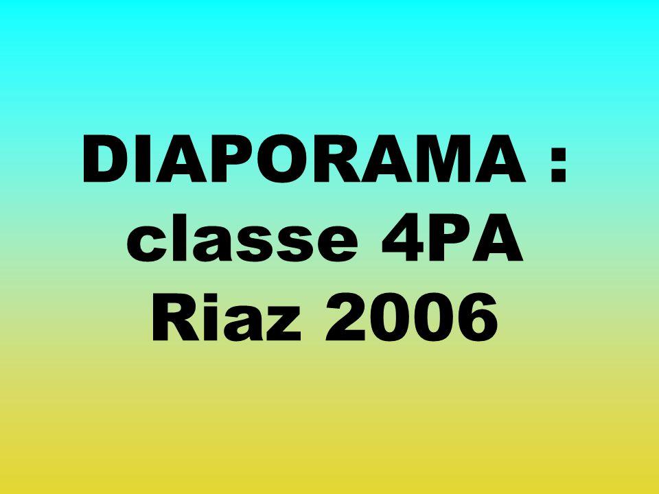 DIAPORAMA : classe 4PA Riaz 2006