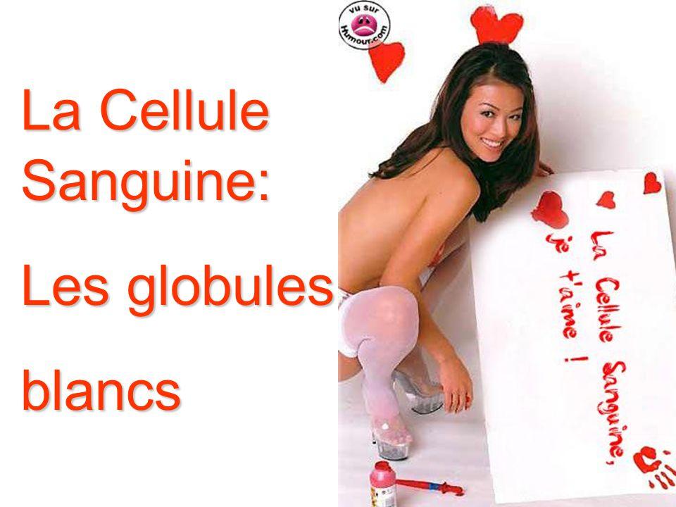 La Cellule Sanguine: Les globules blancs