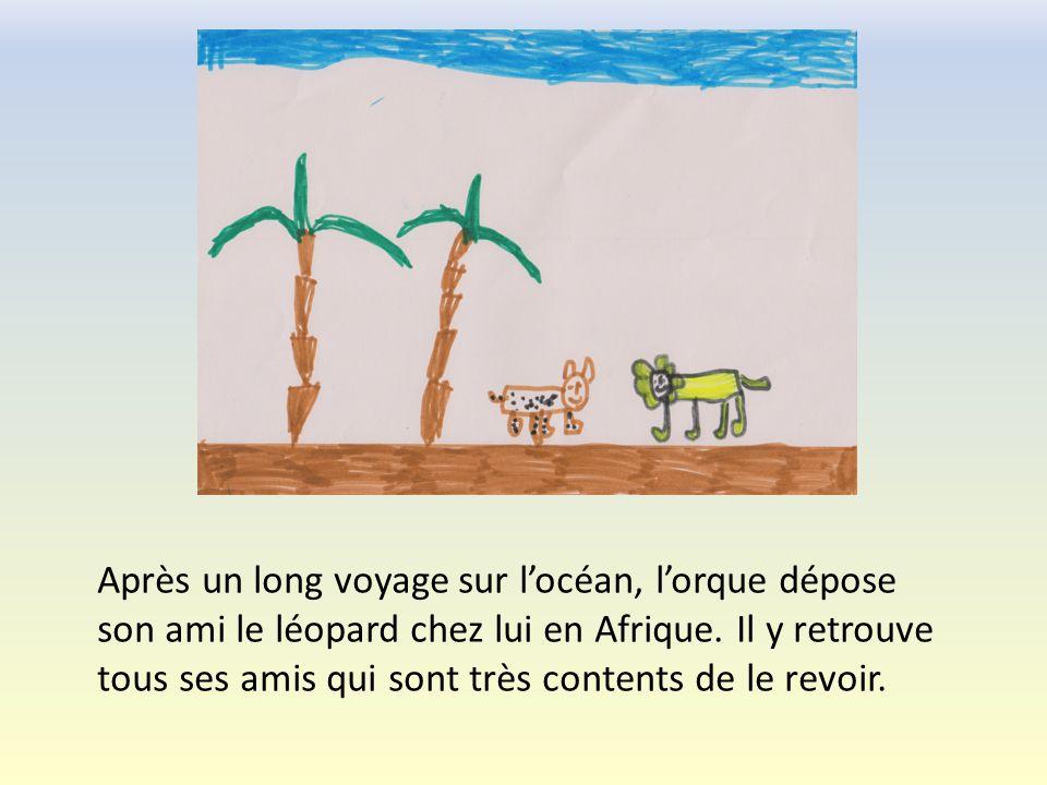 Après un long voyage sur locéan, lorque dépose son ami le léopard chez lui en Afrique.