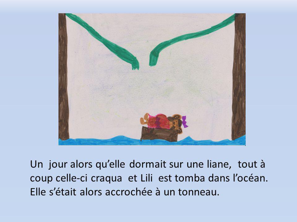 Un jour alors quelle dormait sur une liane, tout à coup celle-ci craqua et Lili est tomba dans locéan.