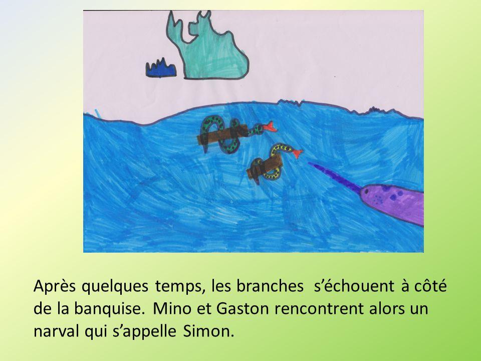 Après quelques temps, les branches séchouent à côté de la banquise. Mino et Gaston rencontrent alors un narval qui sappelle Simon.