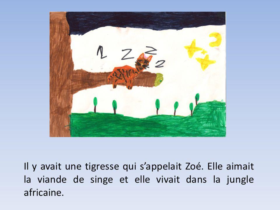 Il y avait une tigresse qui sappelait Zoé.