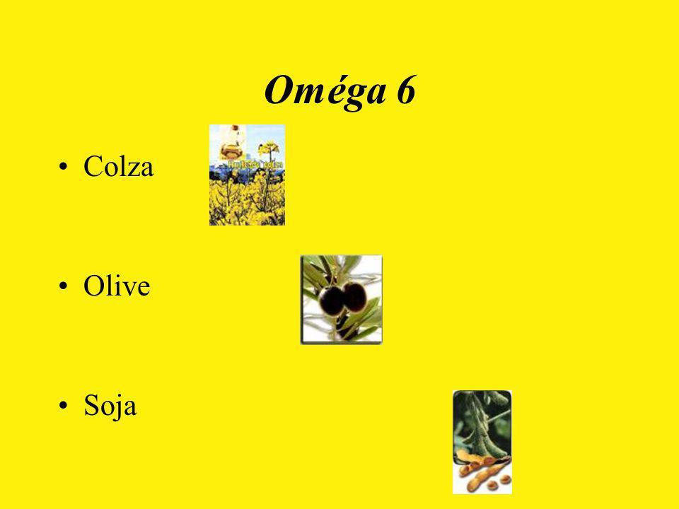 Oméga 6 Colza Olive Soja