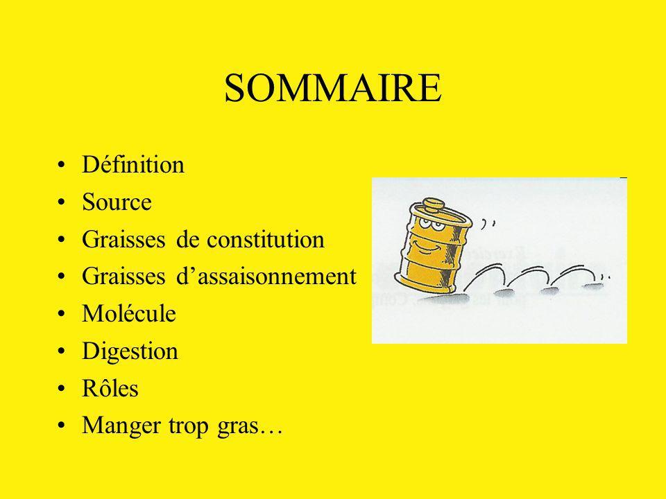 SOMMAIRE Définition Source Graisses de constitution Graisses dassaisonnement Molécule Digestion Rôles Manger trop gras…