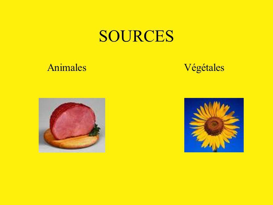 SOURCES Animales Végétales