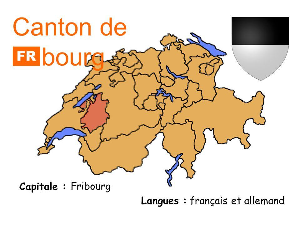 Capitale : Langue : allemand Canton dAppenzell Rhode intérieures Capitale : Canton dAppenzell Rhodes extérieures Herisau Appenzell AI AR