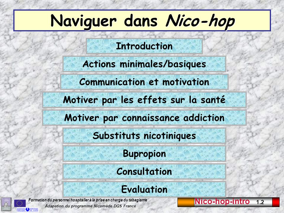 Nico-hop-intro 1.13 Formation du personnel hospitalier à la prise en charge du tabagisme Adapation du programme Nicomède DGS France Charte Hôpital sans tabac Chaque point décline la démarche vers un hôpital sans tabac.