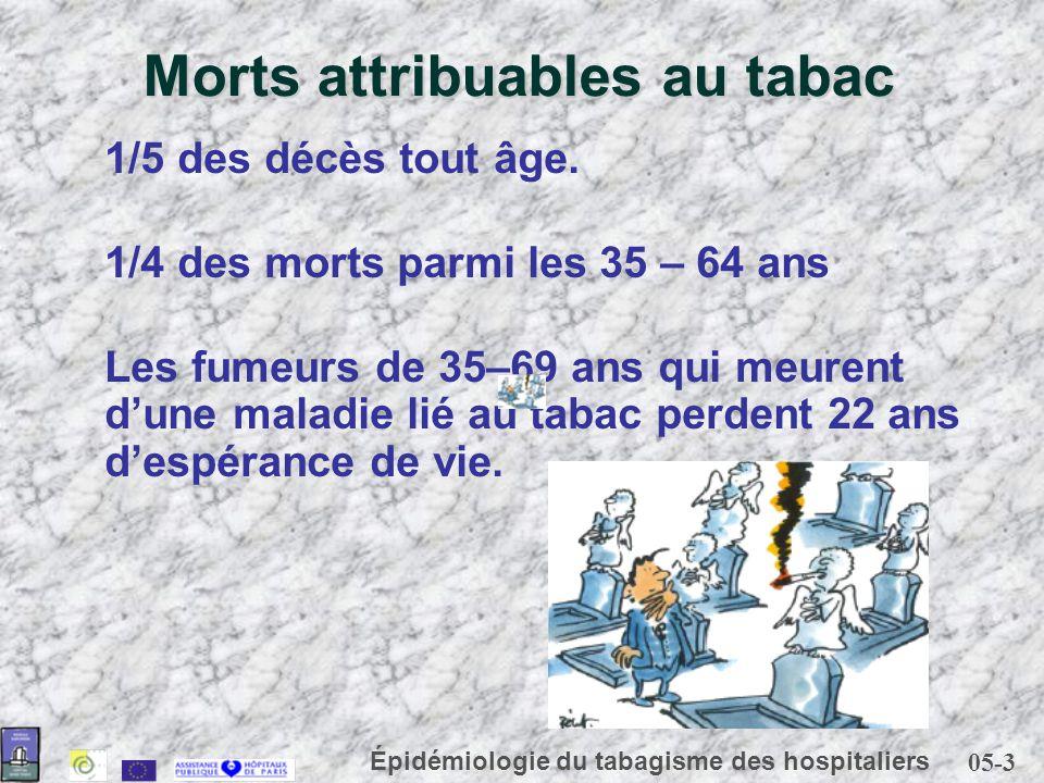 05-3 Épidémiologie du tabagisme des hospitaliers Morts attribuables au tabac 1/5 des décès tout âge. 1/4 des morts parmi les 35 – 64 ans Les fumeurs d