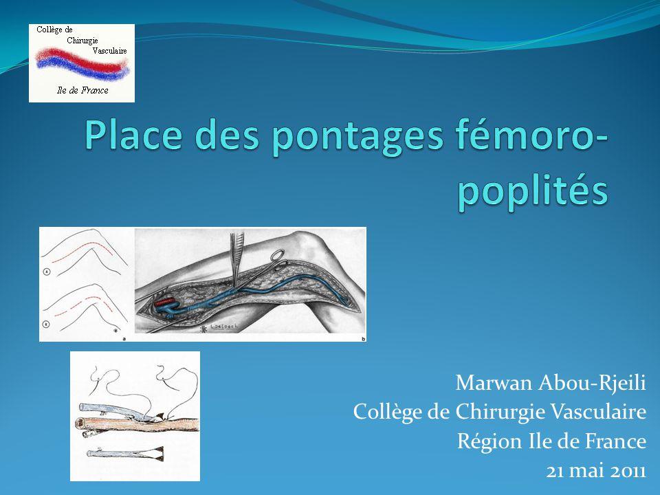 Marwan Abou-Rjeili Collège de Chirurgie Vasculaire Région Ile de France 21 mai 2011