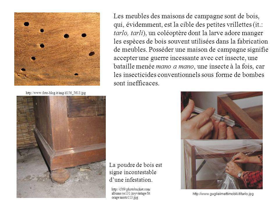 http://www.foto-blog.it/img/d156_5613.jpg Les meubles des maisons de campagne sont de bois, qui, évidemment, est la cible des petites vrillettes (it.: tarlo, tarli), un coléoptère dont la larve adore manger les espèces de bois souvent utilisées dans la fabrication de meubles.