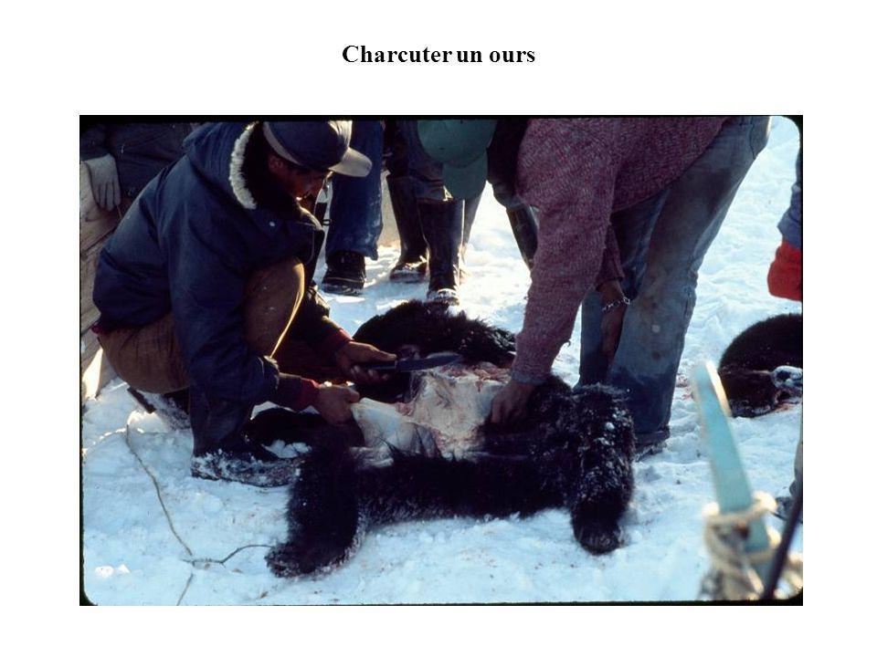 Charcuter un ours
