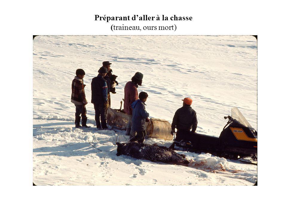 Préparant daller à la chasse (traineau, ours mort)