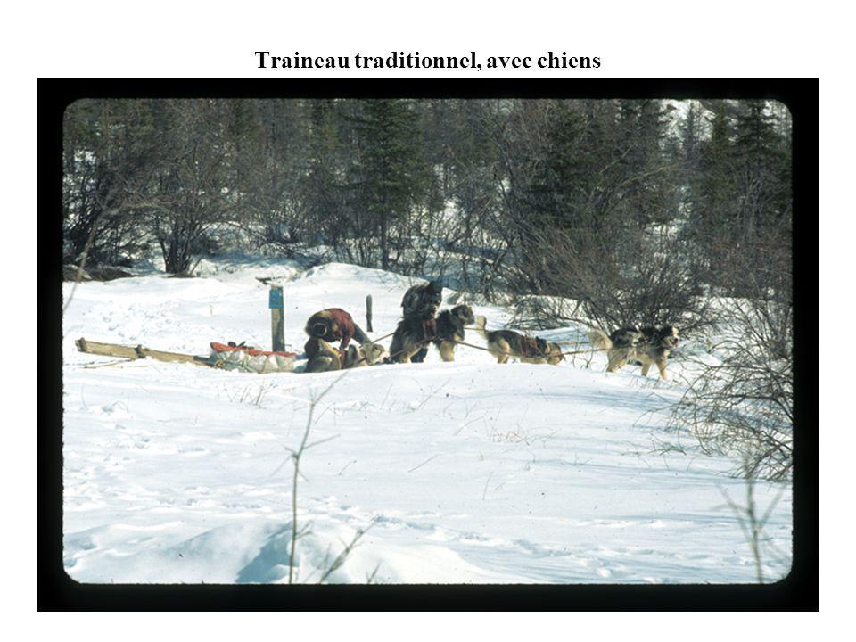 Traineau traditionnel, avec chiens