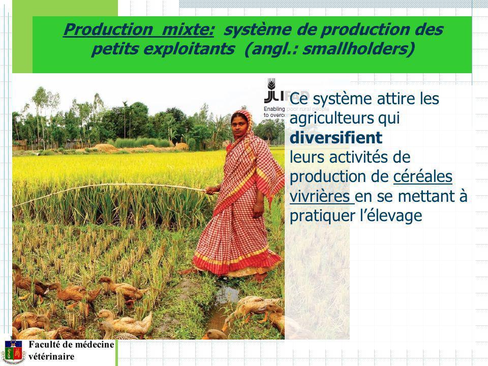 Production mixte: système de production des petits exploitants (angl.: smallholders) Ce système attire les agriculteurs qui diversifient leurs activités de production de céréales vivrières en se mettant à pratiquer lélevage