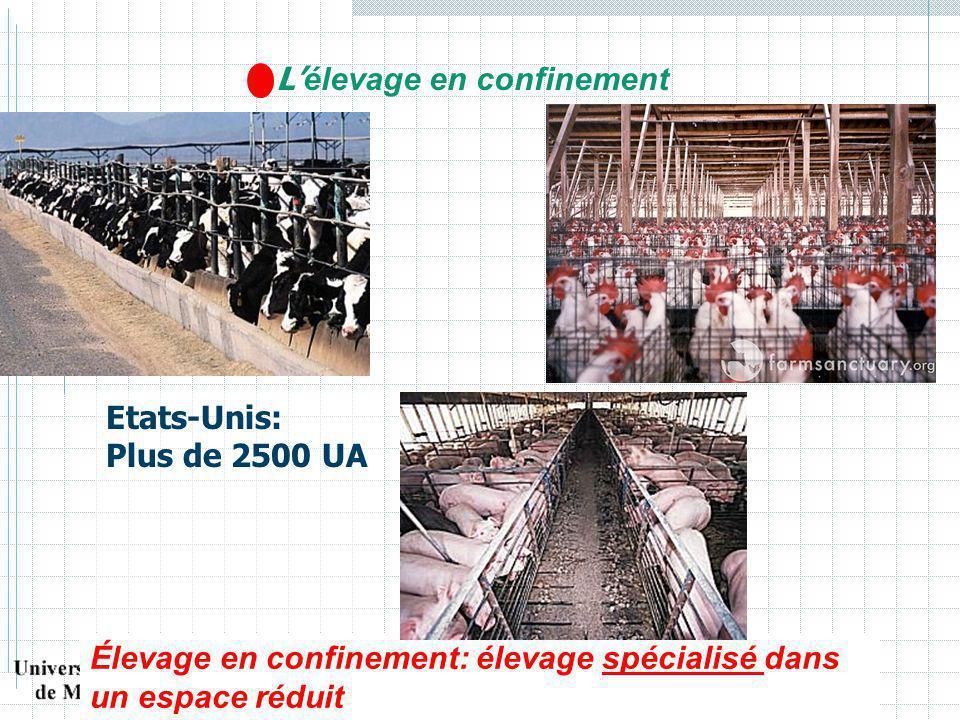 L élevage en confinement Etats-Unis: Plus de 2500 UA Élevage en confinement: élevage spécialisé dans un espace réduit
