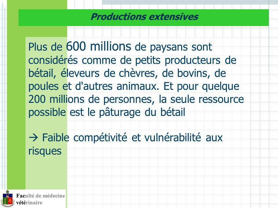 Dimension économique: les marchés de proximité opportunités pour les petits producteurs