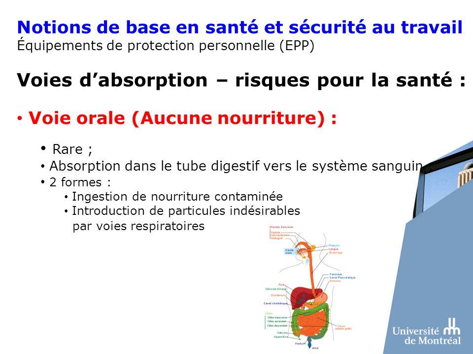 Notions de base en santé et sécurité au travail Équipements de protection personnelle (EPP) Voies dabsorption – risques pour la santé : Voie orale (Au
