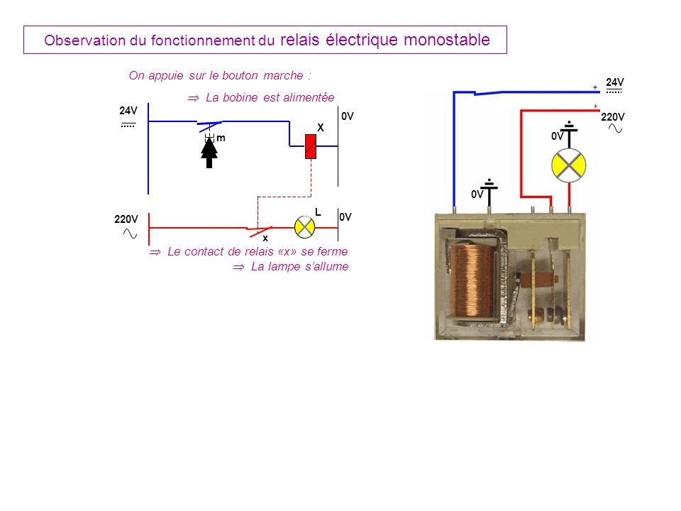 m X L On appuie sur le bouton marche : La bobine est alimentée Le contact de relais «x» se ferme La lampe sallume x 24V 0V 220V 0V 24V 220V 0V Observation du fonctionnement du relais électrique monostable