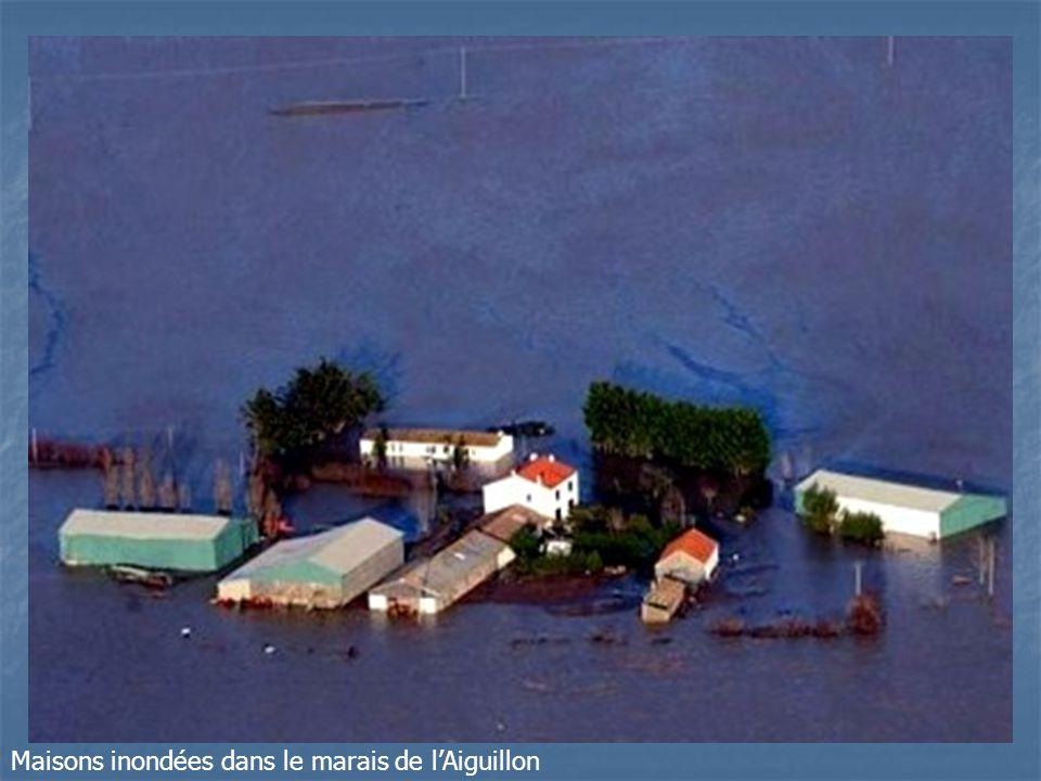 Maisons inondées dans le marais de lAiguillon