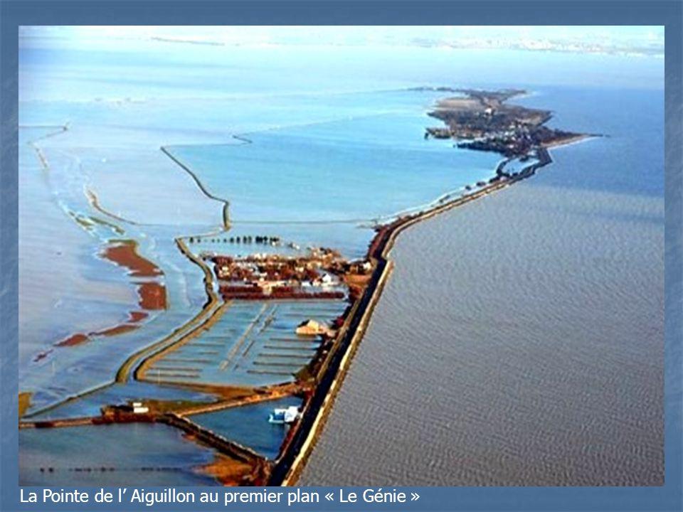 La Pointe de l Aiguillon au premier plan « Le Génie »