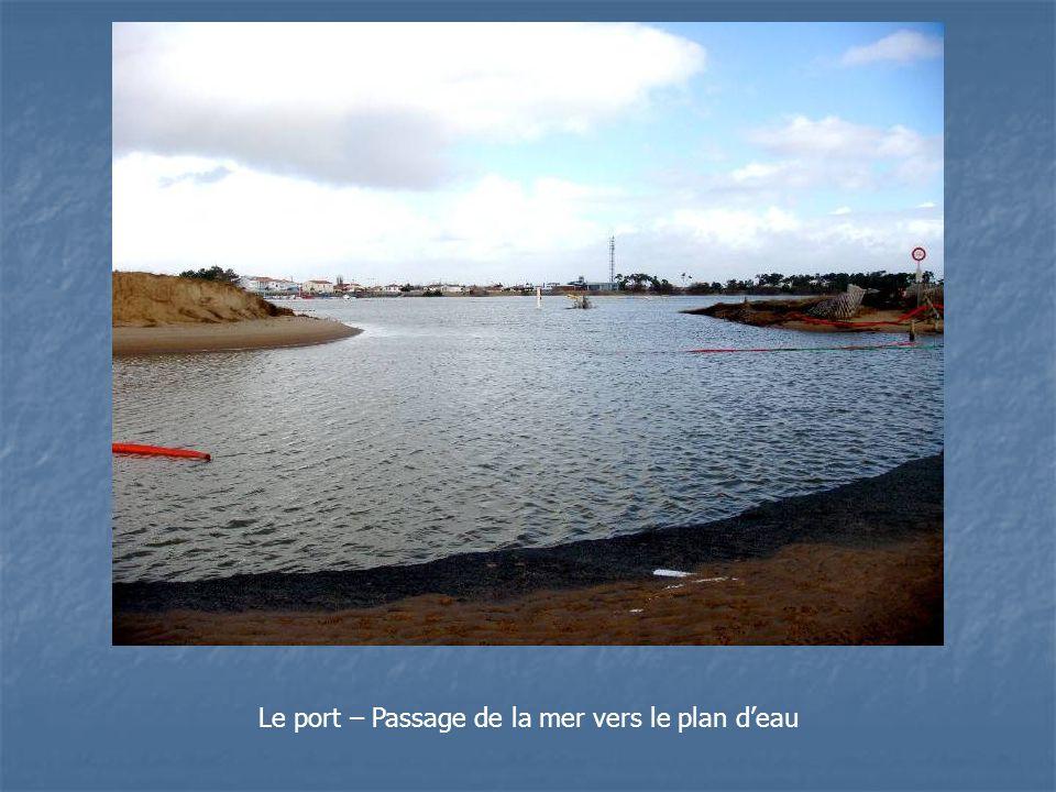 Le port – Passage de la mer vers le plan deau