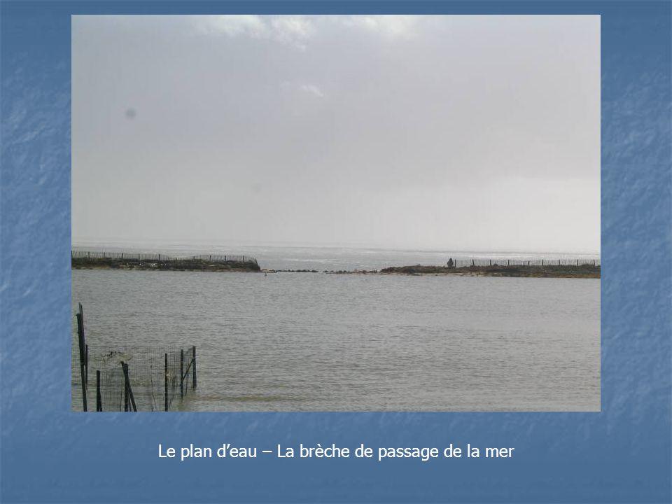 Le plan deau – La brèche de passage de la mer
