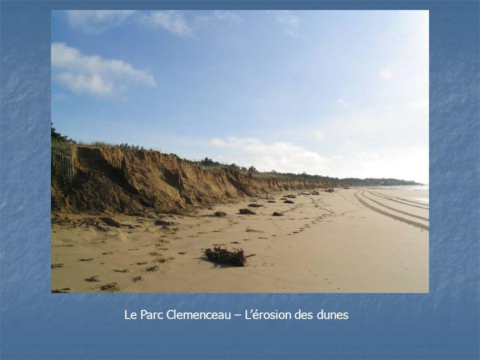 Le Parc Clemenceau – Lérosion des dunes