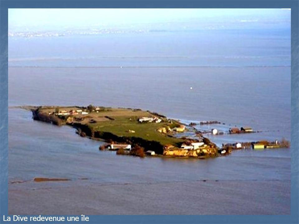 Maison inondée dans le marais de lAiguillon