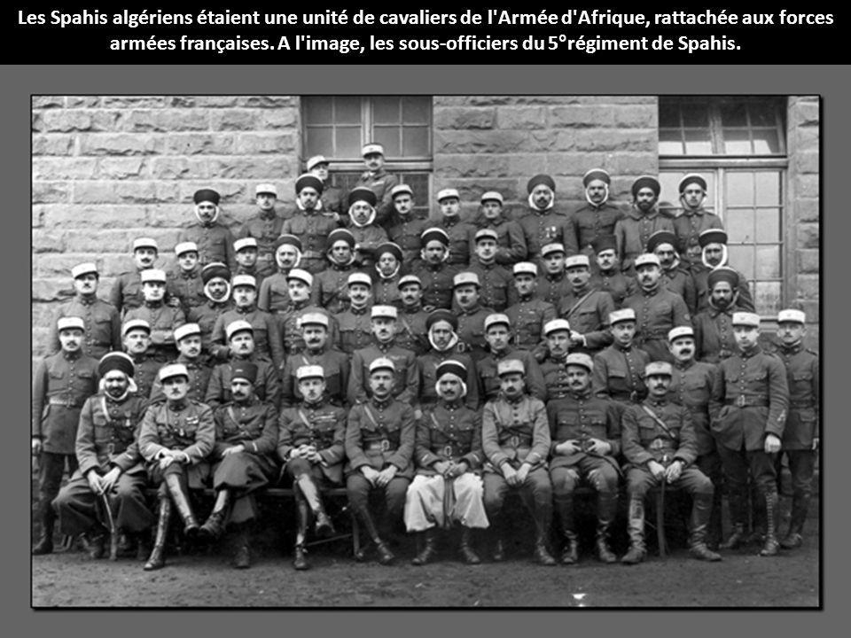Les Spahis algériens étaient une unité de cavaliers de l'Armée d'Afrique, rattachée aux forces armées françaises. A l'image, les sous-officiers du 5°r