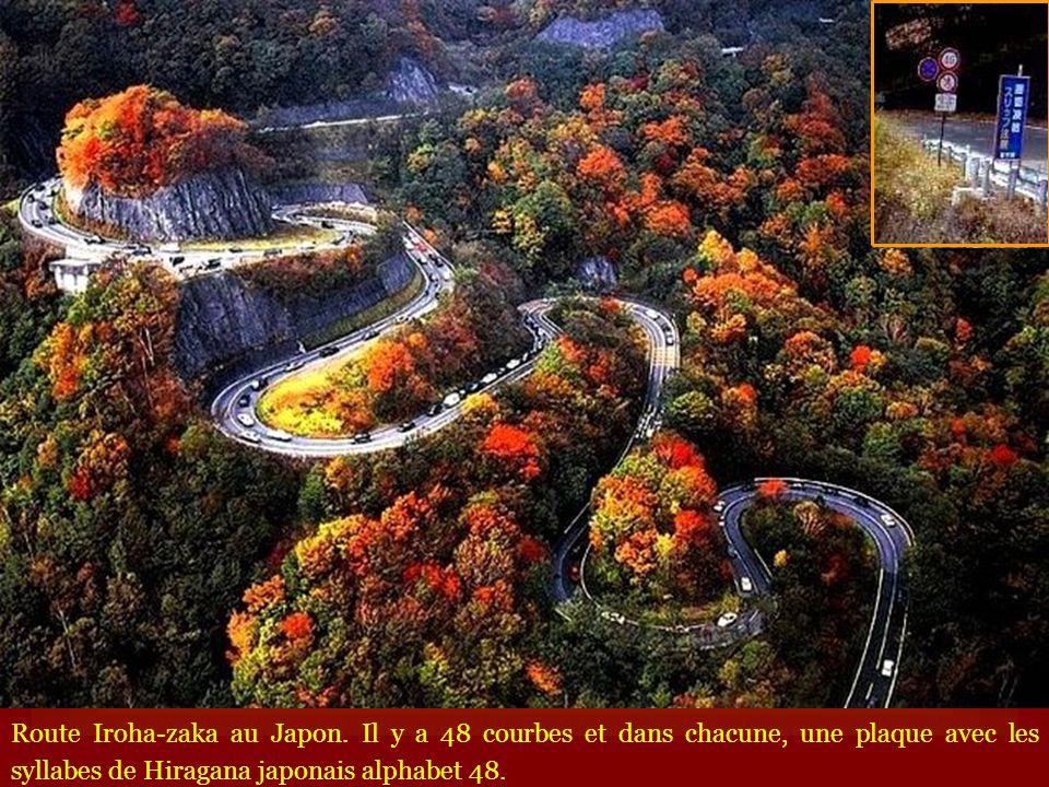 Route Iroha-zaka au Japon. Il y a 48 courbes et dans chacune, une plaque avec les syllabes de Hiragana japonais alphabet 48.