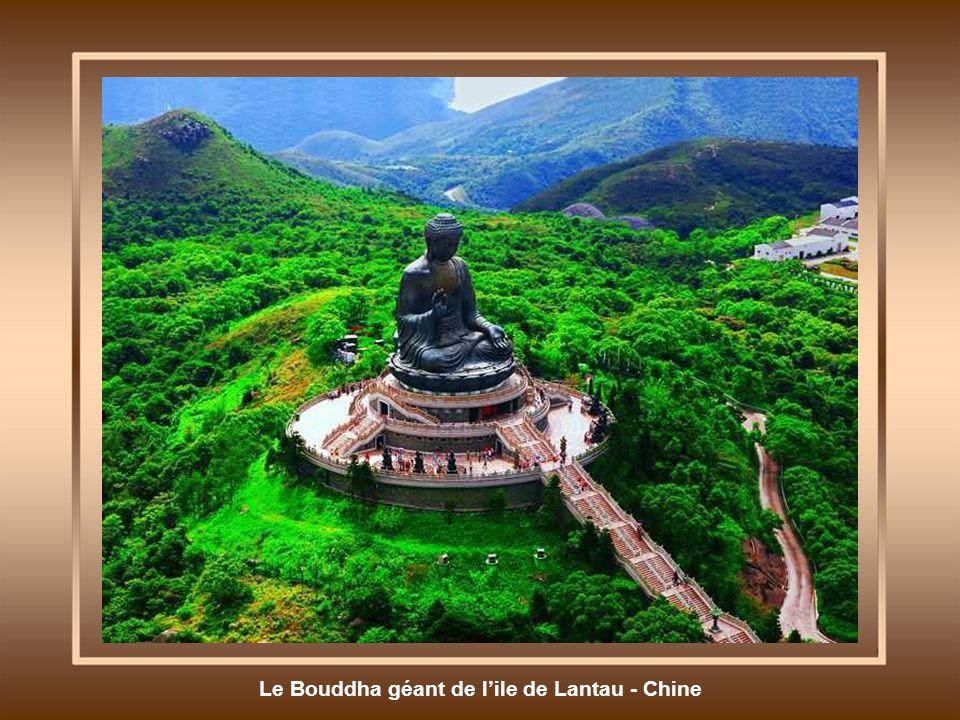 Le Bouddha géant de lile de Lantau - Chine