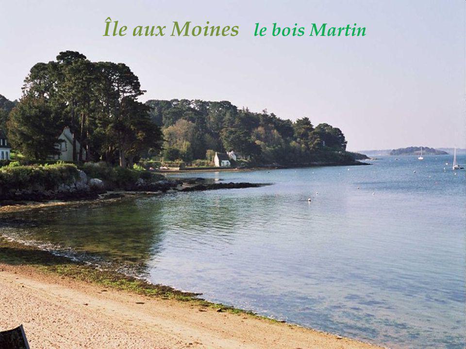 Île aux Moines le bois Martin