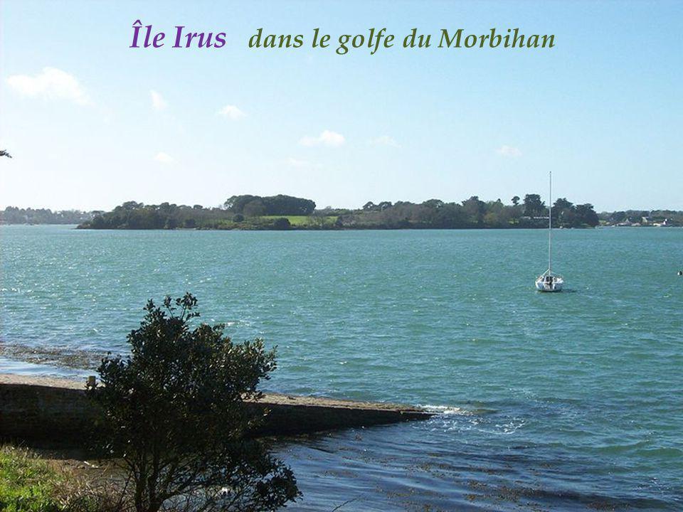 Île Irus dans le golfe du Morbihan