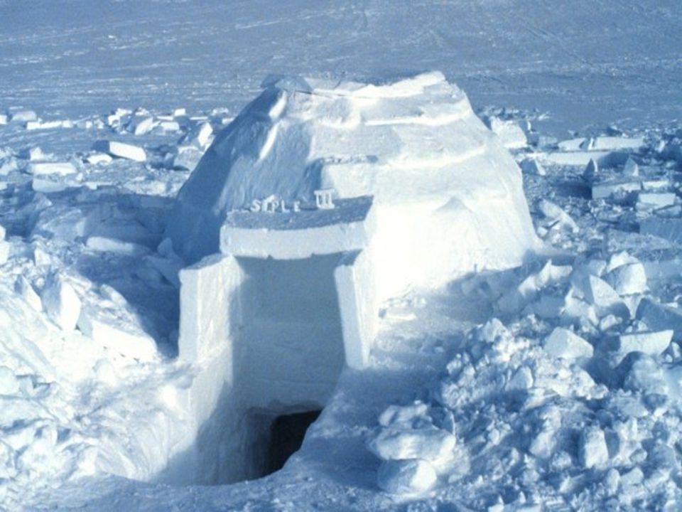 Les inuits utilisent maintenant ligloo lorsquils sont à la chasse pour plusieurs jours…