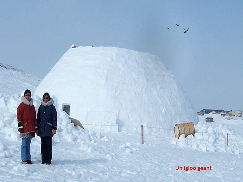 Un gros bloc de neige durcie sert de porte pour ligloo…