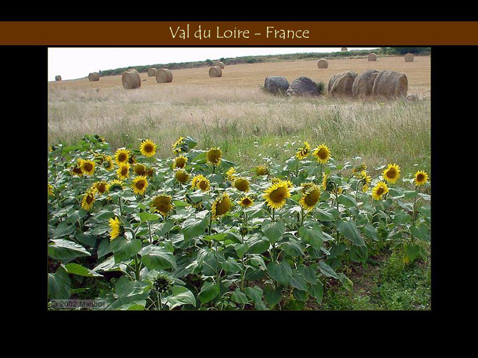 Val du Loire - France