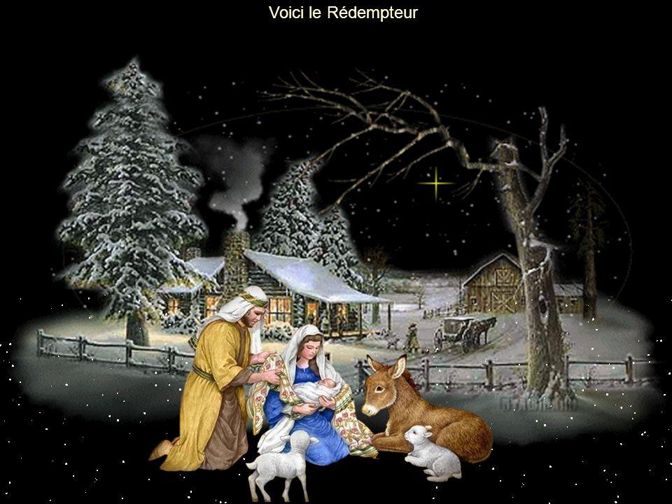 Voici le Rédempteur Noël